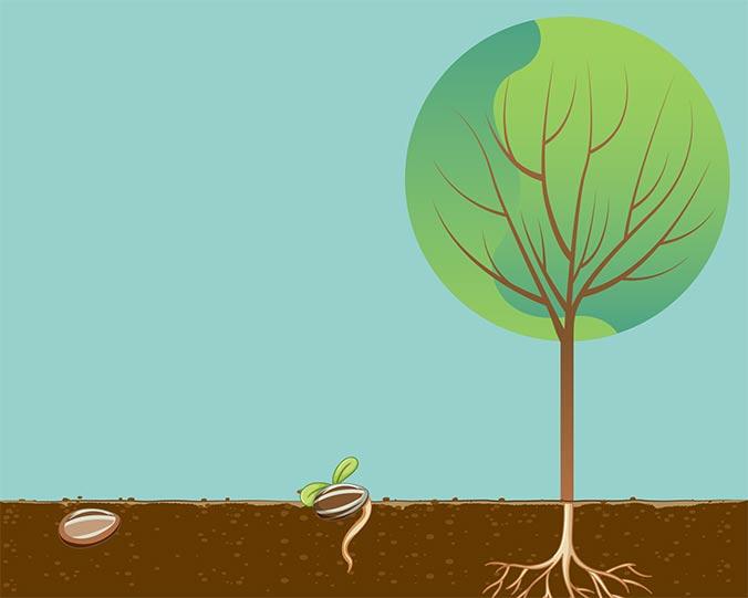 Una storia di sostenibilità